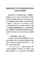 县委督导组在2018年某局党组民主生活会上的点评讲话提纲