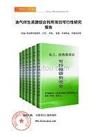 油气伴生资源综合利用项目可行性研究报告(申请报告)