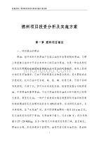 燃料项目投资分析及实施方案