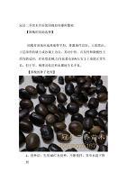 冠县二乔苗木告诉您国槐如何播种繁殖