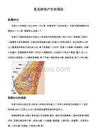 乳房肿块产生和预防