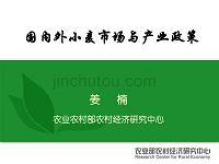 國內外小麥市場與產業政策-農業農村部呂國強