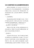 2018肅清李嘉萬慶良流毒影響情況報告