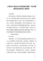 """乡镇关于报送中央环境保护督察""""回头看""""整改落实情况汇报材料"""