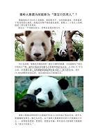 秦嶺大熊貓為何被稱為國寶中的美人