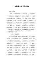 09年度安全工作总结.doc