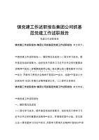 镇党建工作述职报告集团公司抓基层党建工作述职报告