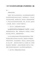 2019黨支部書記抓黨建工作述職報告2篇