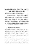2019年最新集中整治形式主義官僚主義工作開展情況總結匯報報告
