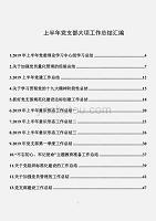 上半年黨支部大項工作總結匯編(16篇2.9萬字)
