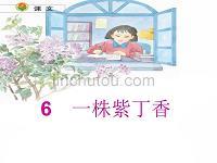 海南2002年五年级语文第14节课_《一株紫丁香