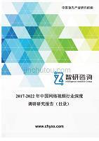 2017-2022年中国网络视频行业深度调研研究报告