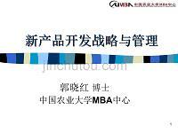 【精品文档】新产品开发战略与管理-新产品开发