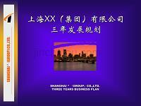 【经管励志】上海XX(集团)有限公司三年发展规划