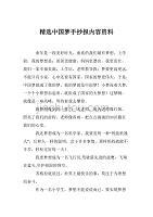 精选中国梦手抄报内容资料