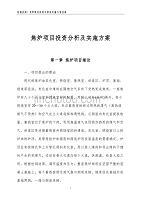 焦炉项目投资分析及实施方案