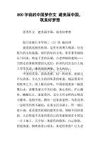 美丽中国我的中国梦作文800字-金锄头文库