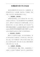 2018县政府扫黑除恶专项斗争工作总结