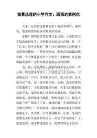 借景说理的小学作文:顽强的紫荆花