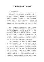 广电局领导个人工作总结